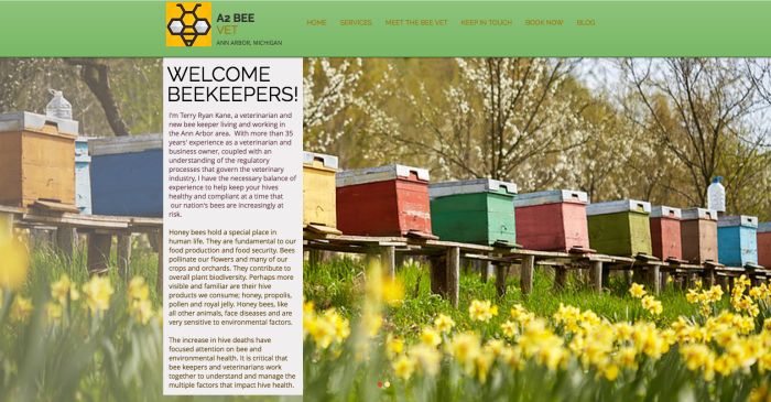 small business website designer Ann Arbor portfolio, WIX design for a veterinarian featuring row of colorful hives.